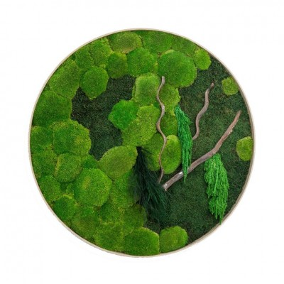 Round moss wall art – moss with wood