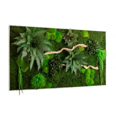Moss wall art - Maintenance-free plants, moss and wood